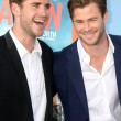 Постер, плакат: Liam Hemsworth Chris Hemsworth