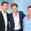 Постер, плакат: Liam Hemswroth Chris Hemsworth Luke Hemsworth