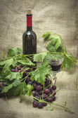 Sweet red grapes with bottle of red wine. — Stock Photo
