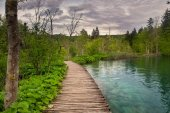 Dramatic wildness view in Plitvice National Park, Croatia — Stock Photo