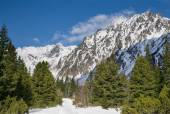 Breathtaking view of snowy mountains in the Tatra mountains — Stock Photo