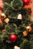 杉木树装饰 — 图库照片