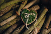Wedding rings on a wooden board in the form of heart on a bed of moss on the background of logs — Stock Photo