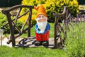 Wooden decorative bridge with garden dwarf  in home garden. — Stock Photo