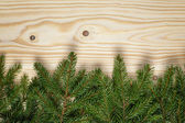 Border from fir twigs on wood background — Stock Photo