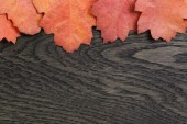 Autumn background with red oak leaves on stained oak table — Stock Photo