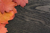 Autumn background with red oak leaves on stained oak table — Foto Stock