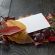 Autumn leaves on old oak table with paper card — Stock Photo #55746345