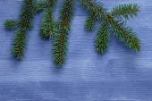 Christmas tree branch on blue wood table — Stock Photo