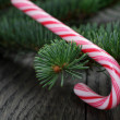 Candy cane on spruce twig — Stock Photo #58079641