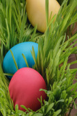 Easter eggs in a row on the grass — Stock Photo
