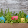 Easter eggs in box with fresh grass over wood background — Stock Photo #63044077