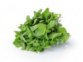 Bunch of fresh spearmint isolated on white — Stock Photo
