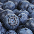 Fresh washed wet blueberries — Stock Photo #67405821