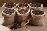 Assortment coffee beans and powder background — Stock Photo
