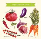 Set of watercolor vegetables and fruit — Stock Vector