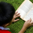 Children Reading — Stock Photo #52443755