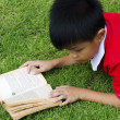 Children Reading — Stock Photo #52504311