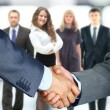 Business handshake — Stockfoto #62708733