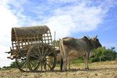 Tourist taxi in Mingun, Mandalay region, Myanmar — Stock Photo