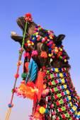Portrait of decorated camel at Desert Festival, Jaisalmer, India — Stock Photo