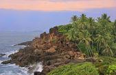 Kayalık sahil palmiye ağaçları, unawatuna, sri lanka — Stok fotoğraf