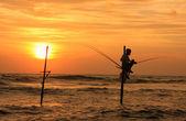 Silhouette of a stick fisherman at sunset, Unawatuna, Sri Lanka — Stok fotoğraf