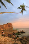 Leaning palm tree with big rocks, Unawatuna beach, Sri Lanka — Zdjęcie stockowe