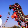 Indian man standing with his decorated camel at Desert Festival, — Stock Photo #55024575