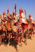 Camel procession at Desert Festival, Jaisalmer, India — 图库照片