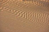 Close up of dune ripples, Thar desert, Jaisalmer, India — Stock Photo