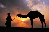Silhouetted bedouin walking with his camel at sunset, Thar deser — Stock Photo