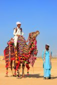Местный человек, ездящий на верблюде на фестивале пустыни, Джайсалмере, Индия — Стоковое фото