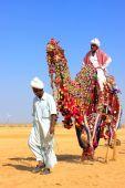 Local man riding a camel at Desert Festival, Jaisalmer, India — Stock Photo