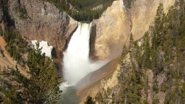 Lower Falls in Yellowstone National Park, Wyoming, USA — Stock Video