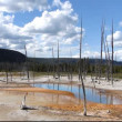 Opalescent pool in Black Sand Basin, Yellowstone National Park, Wyoming, USA — Stock Video #68524371