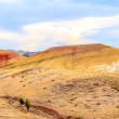 Painted Hills — Stock Photo #64569293