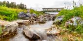 Creek near Johnson Lake — ストック写真