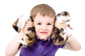 Portrait of a happy boy playing with kittens — Stock Photo