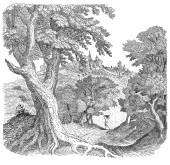 деревня иллюстрация — Стоковое фото