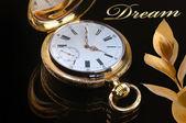 Vintage golden pocket watch — Stock fotografie