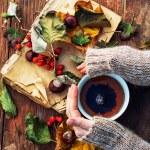 Female hand with a mug of warm autumn tea — Stock Photo #55715397