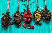 Five varieties of loose tea — Stock Photo