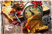 Rainy autumn weather — Stock Photo