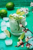 Fruit ice cream in  bowl — Foto de Stock
