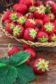 Summer harvest of strawberries — Stock Photo
