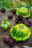 Still life with autumn squash — Stock Photo