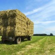 Bales of hay on a trailer standing in the sun — Stock Photo #55489903