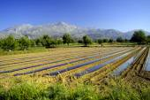 Country farming scene in Crete, Greece — Stock Photo
