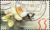 Postage stamp printed in Germany, shows a flowering camellia — Stock Photo